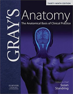 Essential Anatomy And Physiology Books For Body Electronics